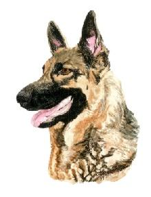 Gaby portrait by Ann Ranlett
