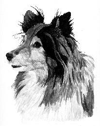 Bentley's portrait: Stage 1