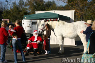 Santa, Tank the Percheron and friends