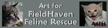 Art for FieldHaven Feline Rescue