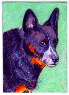Rock On - ACD painting by Ann Ranlett