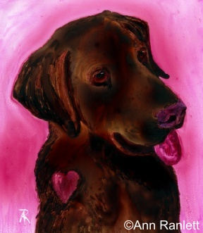 Chocolate Lab - watercolor on Yupo by Ann Ranlett
