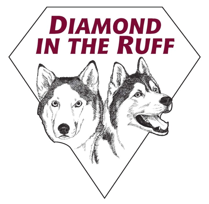Diamond in the Ruff logo