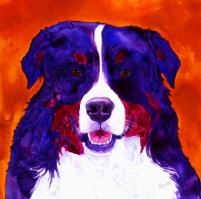 Kassie - Bernese Mountain Dog - watercolor on Yupo