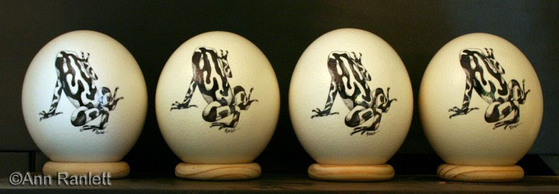 Poison dart frogs in pen & ink on ostrich eggs, by Ann Ranlett