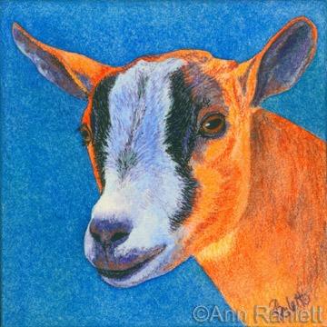 Goat #2, painting by Ann Ranlett