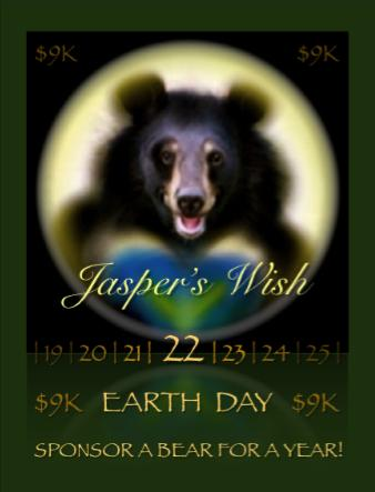 Jasper's Wish logo