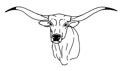 Texas longhorn cows head free coloring pages for Longhorn coloring page
