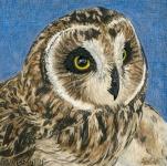 se_owl