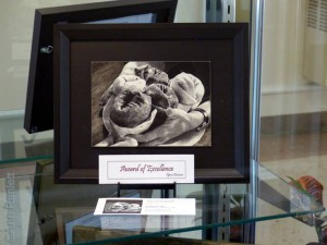 Cathy's Burrito Bouquet in the display case